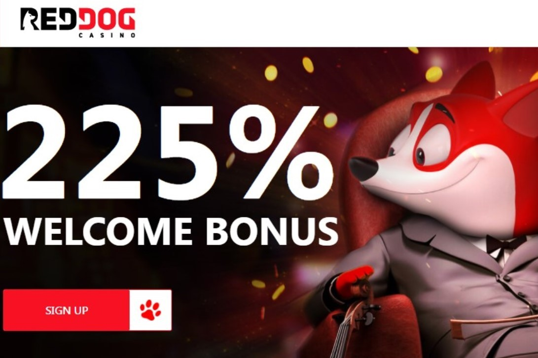 Red Dog Casino Welcome Bonus